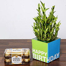3 Layer Bamboo Plant and Chocolates For Birthday: Plants